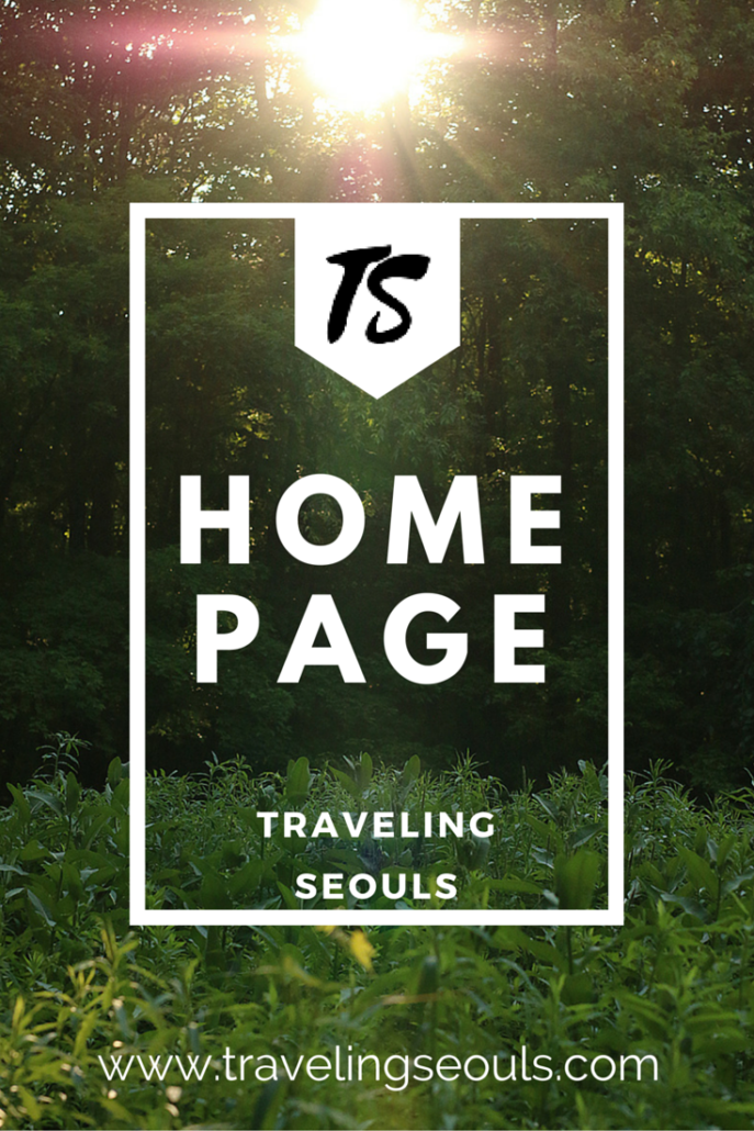 Pinterest Graphic - Traveling Seouls Post