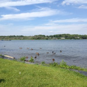 Reeds Lake