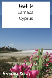 Visit to Larnaca Cyprus pinterest graphic