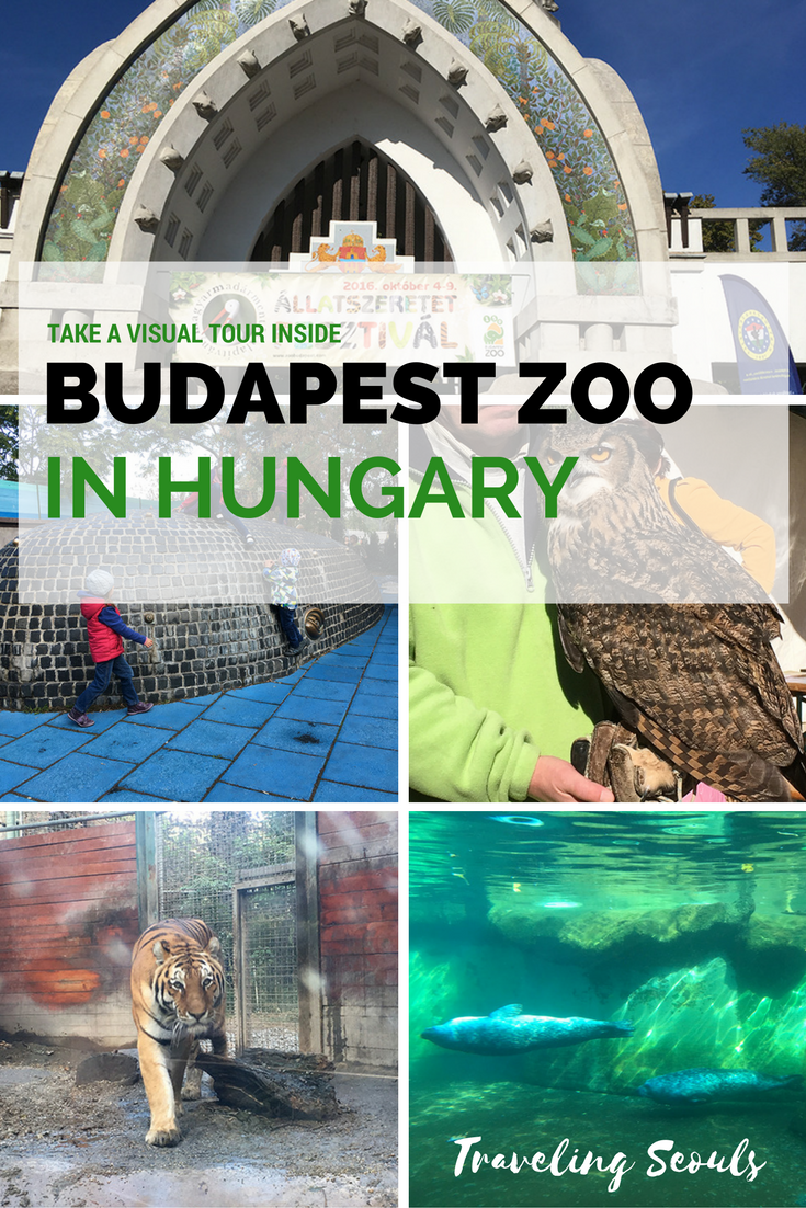 Interested in seeing one of the oldest zoos in the world? Take a visual tour inside the Budapest Zoo in Hungary. It's great to spend the day with the family and friends. Click to see more at Traveling Seouls.