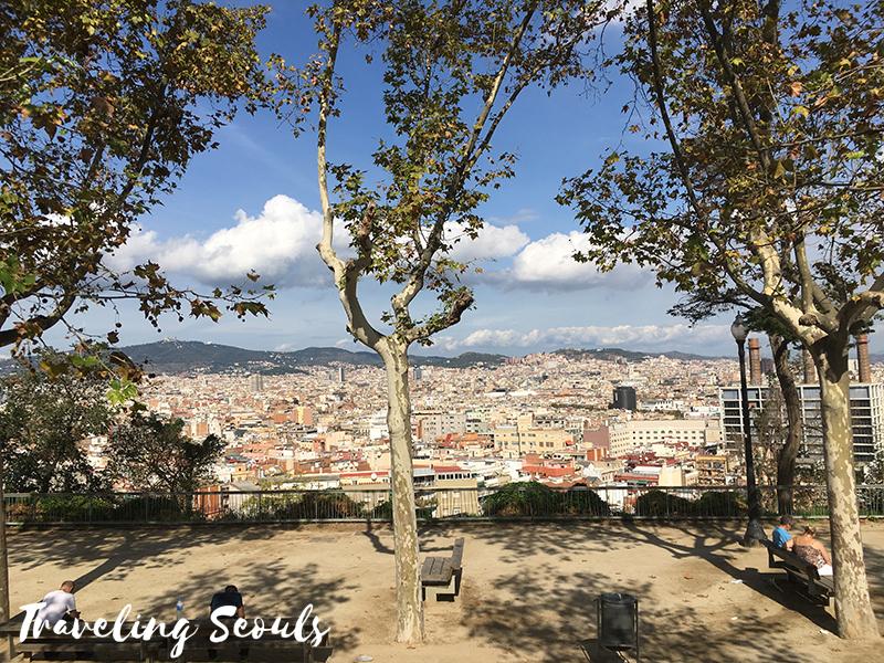 spain bus city view barcelona-city-tour33-copy-2
